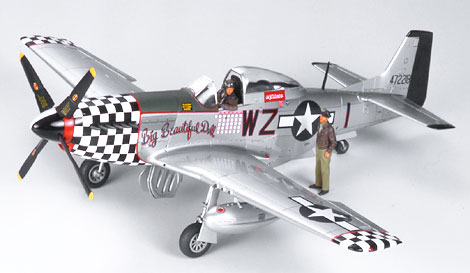 P-51D 8th Air Force Aces