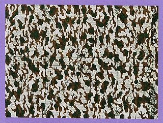 German Army Splinter Camo sheet Shelter Quarter