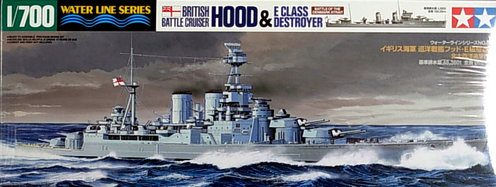 HMS Hood and E Class Destroyer